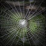 Web150
